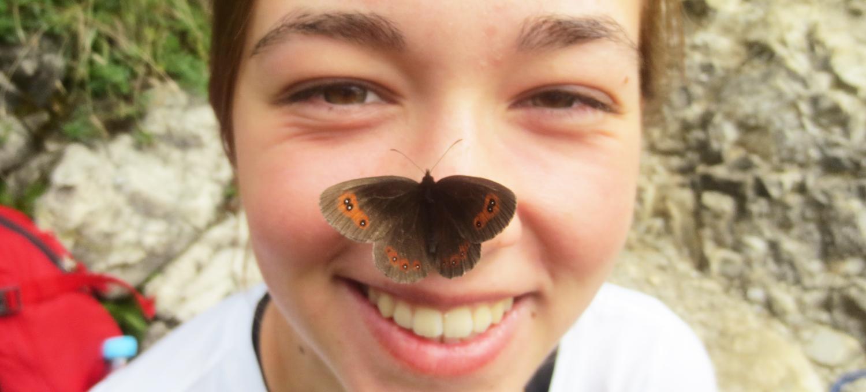 Mitmachaktion: NABU-Insektensommer 2020 - Teil 2